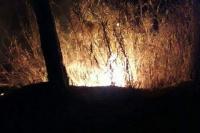 Registraron un incendio en Ullum