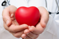Las PASO dejaron un positivo número de donantes de órganos en la provincia