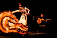 Bodas de Sangre: una tragedia con baile y música flamenca
