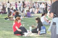 Llega la primavera al Parque de Mayo: todo lo que tenés que saber