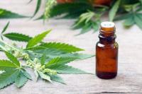 Cannabis medicinal: El Gobierno permitirá el cultivo personal
