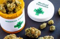 Autorizaron el cultivo, uso y venta de aceite de cannabis en el país
