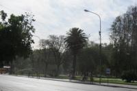 Así estará el clima durante el fin de semana en San Juan: se espera ¿viento y lluvia?