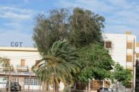 A tener cuidado: emitieron un alerta por fuertes vientos en cordillera y precordillera sanjuanina