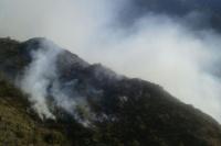 Lograron controlar el incendio en Valle Fértil