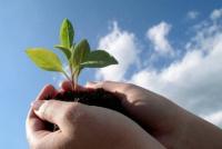 Fondo Semilla: conocé los objetivos para tener un emprendimiento