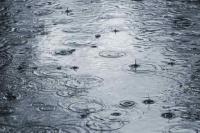 Prepará el paraguas: el sábado, con probabilidad de lluvia