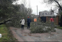El temporal dejó dos muertos en Luján