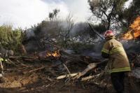 Villa Gesell: incendio en una zona de bosques cerca de Mar de Las Pampas