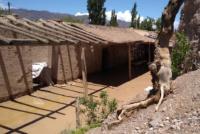 El Gobierno visitó las zonas afectadas de Calingasta por la lluvia y envía asistencia