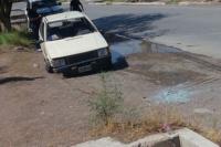 Perdió el control de su vehículo e impactó con un eucalipto