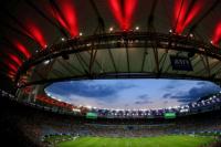 Advierten sobre una posible plaga durante el Mundial de Rusia 2018
