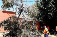Capital: realizaron un operativo de asistencia por fuerte viento