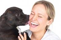"""Las tres zonas de tu cuerpo que tu mascota no debería """"besar"""""""
