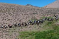 Docentes e historiadores acompañarán el Cruce de los Andes