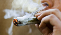 Según un estudio, la marihuana deteriora la capacidad intelectual de manera irreversible