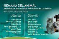 Realizan una maratón de vacunación antirrábica en La Bebida