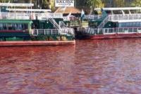 Misterio en Tigre: los ríos del Delta amanecieron con el agua roja
