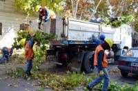Por trabajos de poda, continuarán los cortes de calles en el microcentro