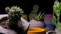 GUEL: la innovadora propuesta sanjuanina de diseños a base de concreto