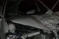 Reconocido contador sanjuanino falleció al impactar su vehículo contra dos caballos