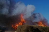 Fuertes incendios de pastizales alertaron a Ullum