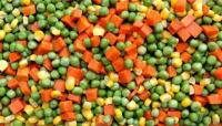 La ANMAT prohibió la comercialización de ciertos productos congelados por una bacteria
