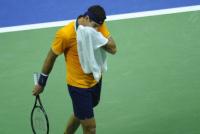 Doble caída: Djokovic le gana 2-0 a Del Potro