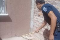 Una serpiente sorprendió a los vecinos del Bº Los Plasticos