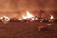Ascienden a 66 los muertos en la explosión de un ducto de combustible en México