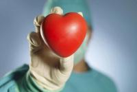 Día Mundial del Trasplante de Órganos: en lo que va del 2019, se realizaron más de 200 operaciones de este tipo en el país