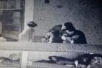Milagro en una comisaría: un policía salvó a una bebé tras maniobras de reanimación