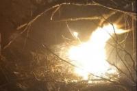 Incendio en las sierras de Valle Fértil: solamente hay daños forestales