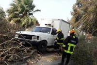 Por el Zonda, una rama cayó sobre una camioneta en Pocito