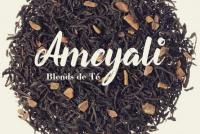 Ameyali, la nueva propuesta del té en San Juan, para mejorar tus infusiones
