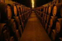 Señalan que el acuerdo Mercosur-UE pondría en peligro a los vinos argentinos