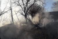 Una familia pocitana sufrió el incendio de su hogar
