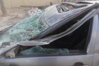 Un árbol cayó sobre un auto y dos personas se salvaron de milagro