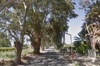 Fatal choque en Angaco: un muerto y otro en grave estado