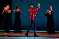 El Teatro del Bicentenario abre la audición para bailaores de flamenco