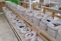 EcoGreen: el nuevo almacén natural con conciencia global para combatir la pérdida de alimentos