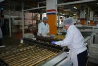 Quieren reactivar la producción de la fábrica de galletitas de San Juan