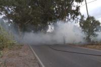 Pirómano suelto en Pocito: incendió pastizales en distintos puntos del departamento