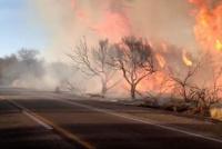 Tremendo incendio en Ullum: ocurrió en inmediaciones de un camping