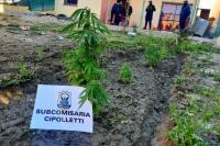 Secuestran drogas, armas y dinero en el barrio Valle Grande