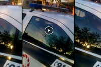 Video: fue arrestado por violento y a los cabezazos quiso romper el vidrio del patrullero