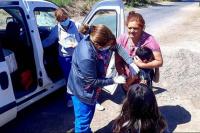Campaña de vacunación: más de 6 mil niños ya fueron inmunizados
