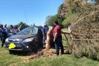 Tremendo accidente: Salió de la ruta, rompió el guardarrail y chocó un árbol