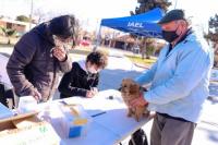 Habrá vacunación gratuita para perros y gatos de Desamparados