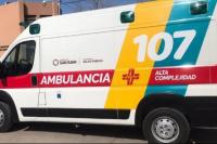 Una nena de 8 años fue hospitalizada después que la atacara un perro